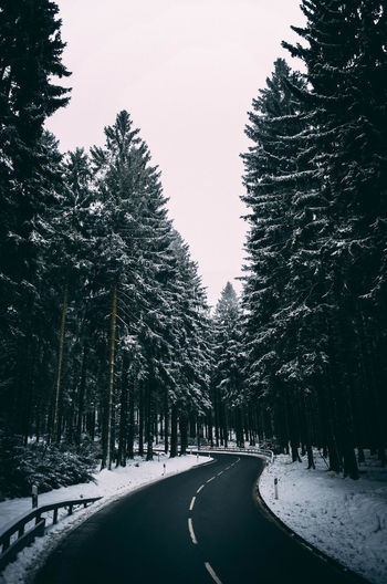 Road amidst trees against clear sky during winter