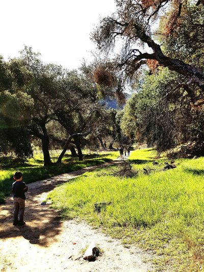The path less traveled... Hiking❤ Kids Son Enjoying Life Oak Trees Woods