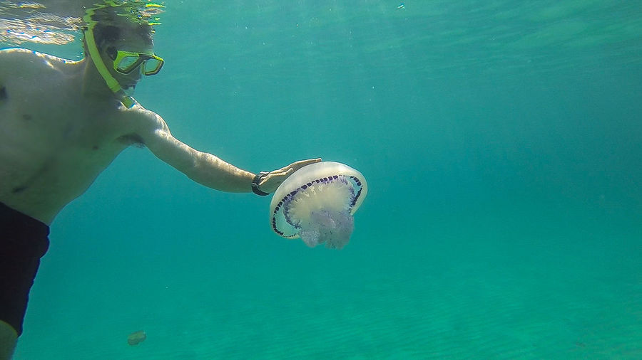 Man swimming by jellyfish in sea