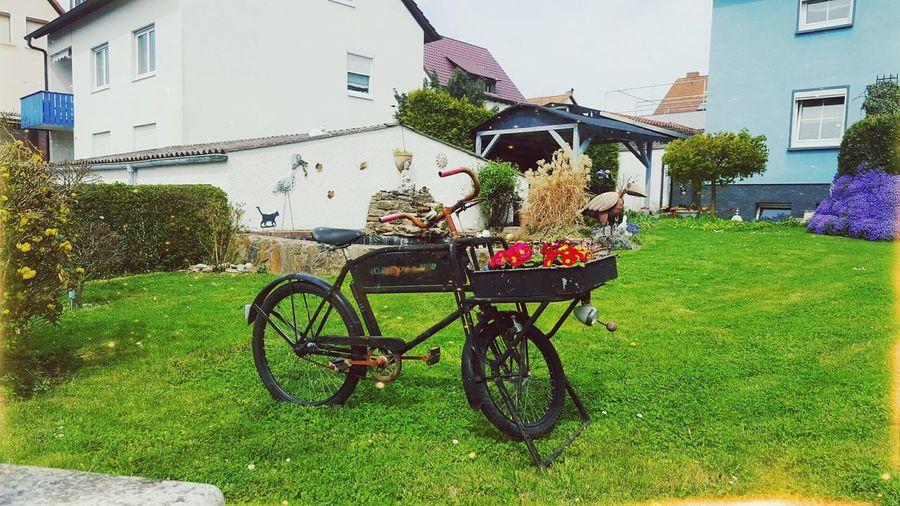 Garden Flower Bicycle Grass Bicycle Basket