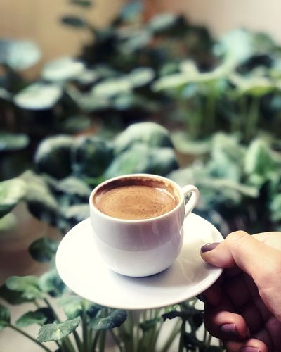 Cup of coffee with plants background
