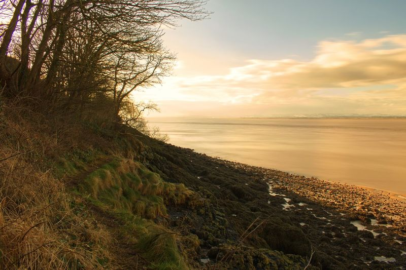 Long Exposure Sea Nature Sky Scenics Tranquility Water Beauty In Nature Tranquil Scene Sunset Horizon Over Water Beach No People Outdoors Tree Landscape Day