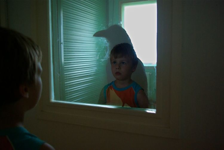 Reflection Of Boy And Raven On Glass Window