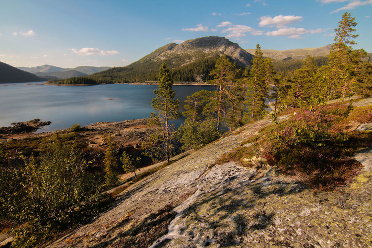 Beauty In Nature Day Lake Lake View Landscape Mountain Nature No People Norway Outdoors Scenics Sky Stone Tree Water