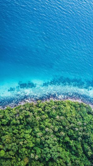 Aerial view of blue sea water and a green tree Island DJI Mavic Pro Background Photography Background Water Nature Beauty In Nature Green Color No People Plant Sea Land Scenics - Nature Day Tranquil Scene Grass High Angle View Full Frame Tranquility Outdoors