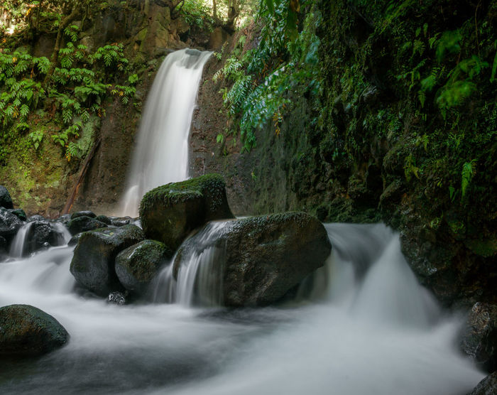 Portugal Beauty In Nature Blurred Motion Day Environment Flowing Water Forest Freshness Long Exposure Moss Motion Nature Outdoors Paradise Power In Nature Rapid River Rock - Object Saomiguel Saomiguelisland Scenics Tranquil Scene Tree Water Waterfall