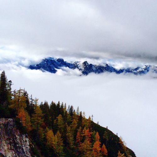 Nature Enjoying The Sights Take A Break Fog Foggy Morning Relaxing First Eyeem Photo