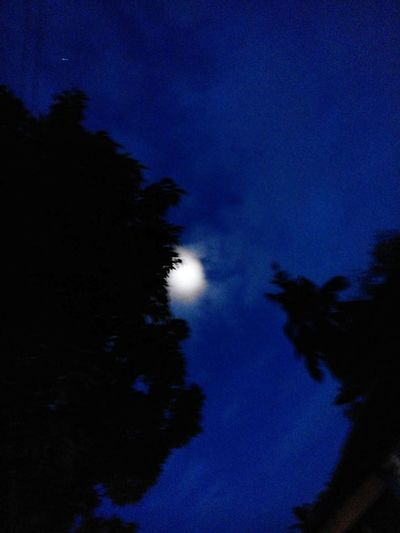 Night Moon Astronomy Blue Moonlight Low Angle View