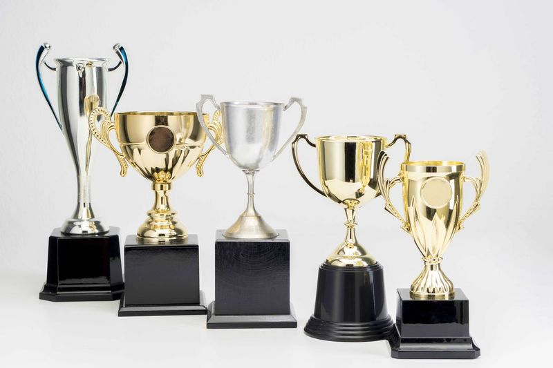 Variety of Trophy Cup on white background Trophy AWARD Still Life Indoors  Achievement Studio Shot No People Success Gold Colored Shiny White Background Side By Side Metal Winning Competition Variation In A Row Arrangement Choice Group Of Objects