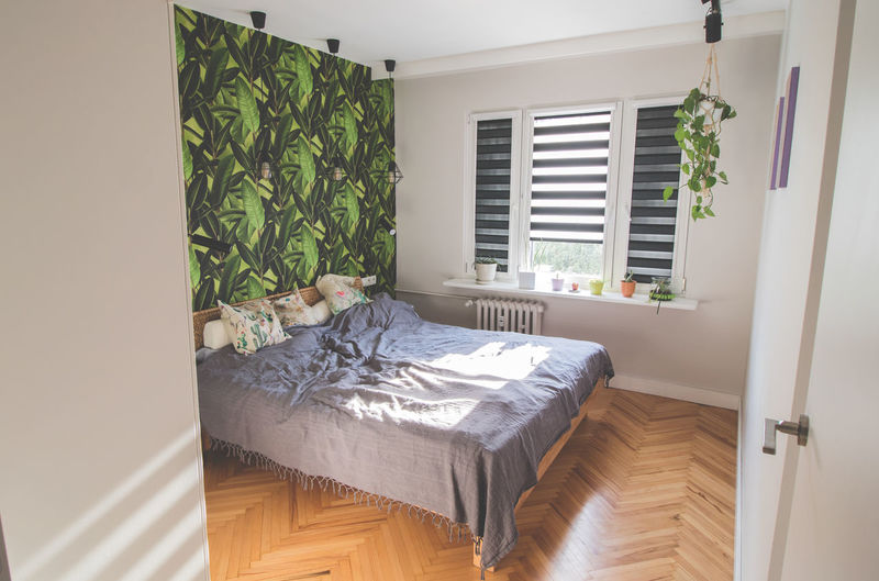 Potted plant on bed by window at home