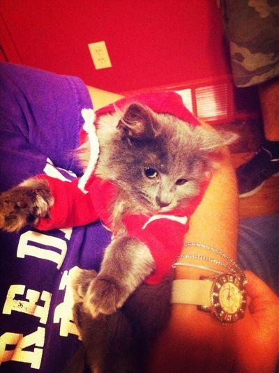 Yalah In Her New Sweater.