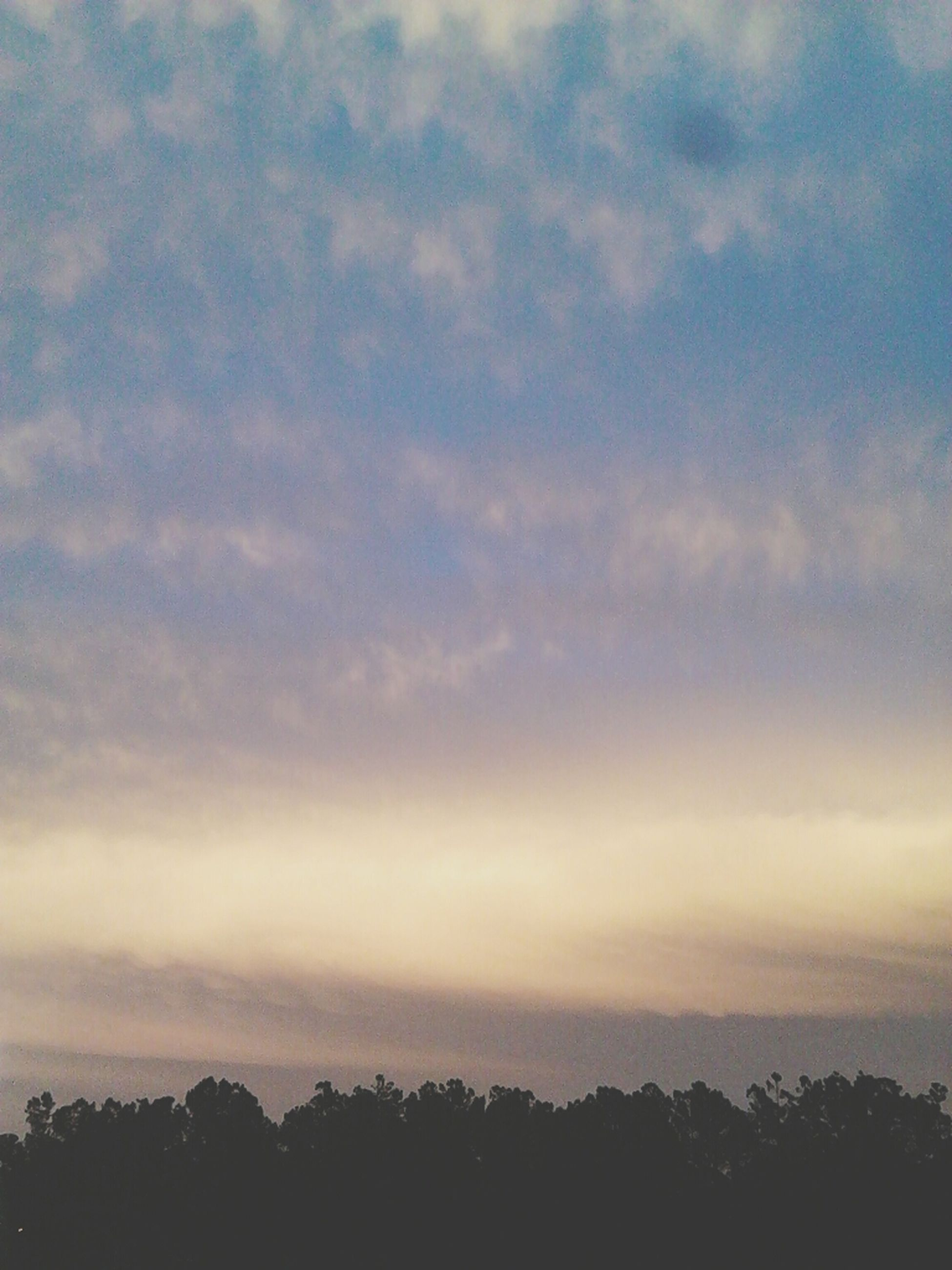 sky, tranquility, tranquil scene, scenics, beauty in nature, silhouette, tree, cloud - sky, nature, sunset, idyllic, cloudy, cloud, low angle view, outdoors, no people, dusk, weather, landscape, non-urban scene