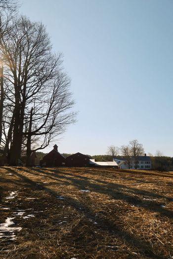 Farmhouse Canon