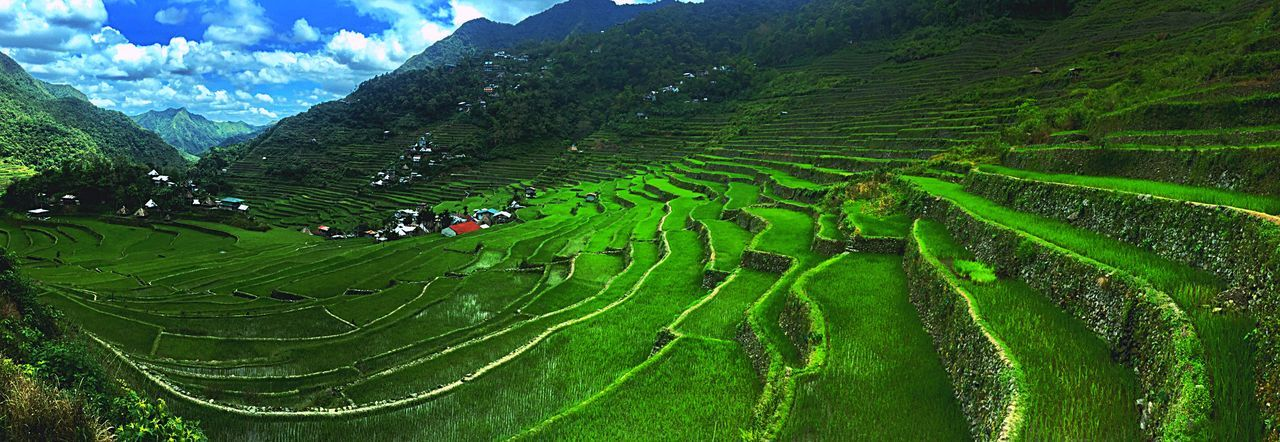 EyeEmNewHere EyeEm Best Shots EyeEm Best Shots Agriculture Mountain Landscape Environmental Conservation Social Issues Field Valley Rice - Cereal Plant Rice Paddy Terraced Field Nature Farm Asian Style Conical Hat Land Food Travel Growth Outdoors No People Beauty