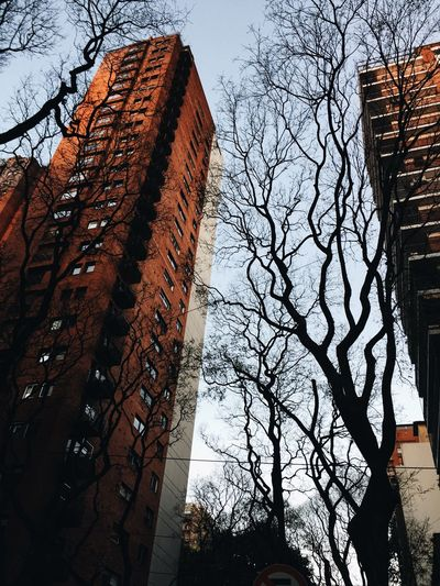 City Buenos Aires Architecture Low Angle View No People Outdoors City Street Belgrano