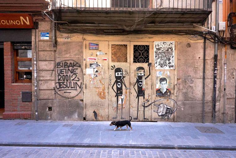 City Life Cool Dog Façade No People Small Dog Small Dog Big Attitude Straydog Street Art Streetphotography Vida De Perros!