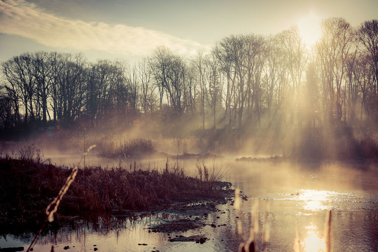 Beauty In Nature Day Fog Lake Landscape Mist Misty Misty Morning Nature Outdoors Rush Scenics Sky Sky And Clouds Sun Sunrise Tree Trees Warm Water