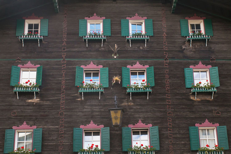 Windows of a traditional Austrian building Austria Architecture Building Building Exterior Built Structure Flowers House Window Wood - Material