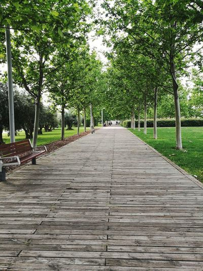 Park Path Wooden Tranquility Grass Walkway Parks Spring Wooden Bridge Calmness Grass Area Pathway Wooden Path Green And Wood Manzanares River