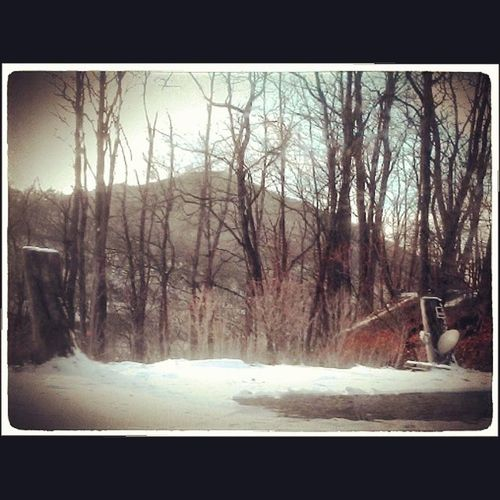 Abandoned lot, precarious cliff Cliff Mauchcunk Mountain Keepout rust trailer winter trees snow