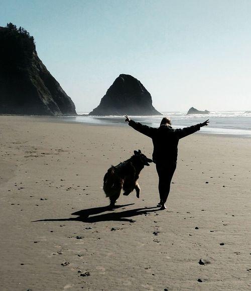 We made it! EyeEmNewHere Elation GSD Dog Beach Silhouette Water Sea