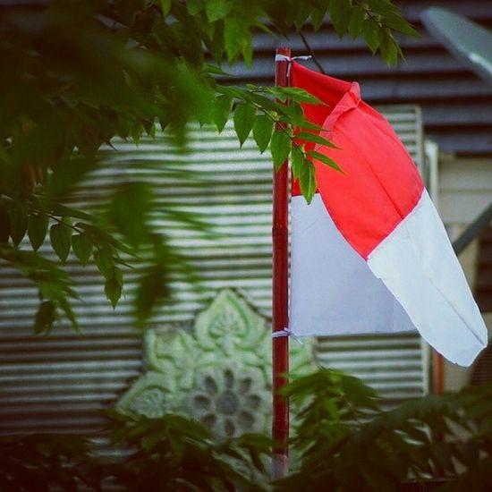 INDONESIA NKRI HARGAMATI TeruskanPerjuangan