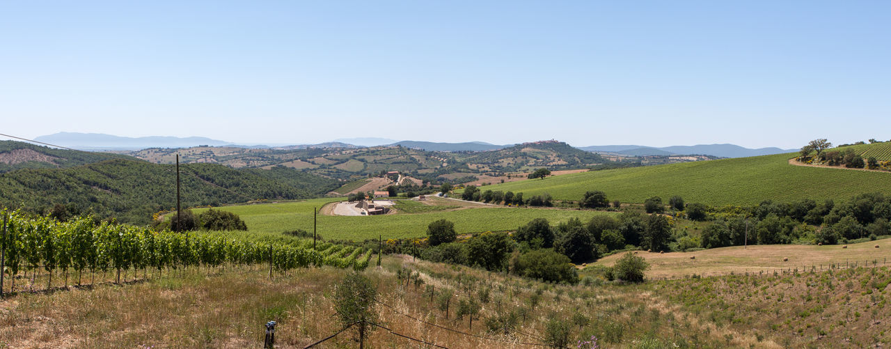 road trip in italy Agriculture Calm Clear Sky Day Farm Hill Holiday Italy Landscape Mountain Mountain Range Nature Non-urban Scene Normal Outdoors Panorama Peace Roadtrip Scenics Summer Travel Destinations Vacations Wine