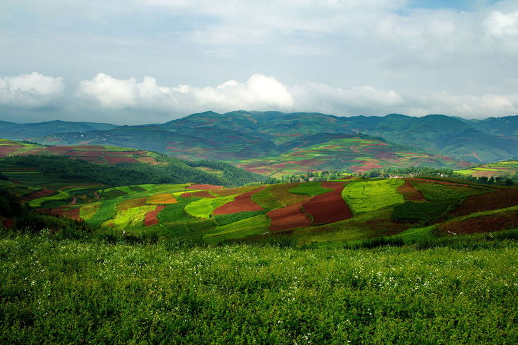 Color palette of Dong Chuan,China China Dong Chuan Dong Chuang Amazing China Beautiful China Nature Beautiful Wonde Amazing Beautiful Nature Amazing Nature Amazing World Wonderful World Environment Environmental Conservation Foreign ASIA Hill Travel Moutain Wallpaper Background Tourism