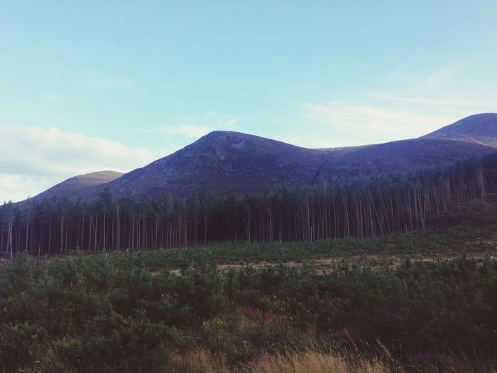 Mourne Mountains Newcastle, Co Down, Ireland.