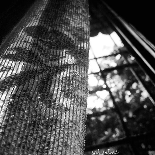 "Today's theme ""Black n White"" (part 2 )..!! Bnw_globe Bnwhite White Black Whitenb Grey Curtain Morning Sun Grill Glass"
