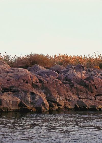 Nile Rocks Destinations Tourism Around The World EyeEm Travel Photography Attractions Outdoor River Rocks Nile Aswan Egypt Cruuse Upper Egypt  Cold Temperature Bird Snow Sunset Sky Landscape Animal Themes Famous Place Tourist Attraction  Rock Formation