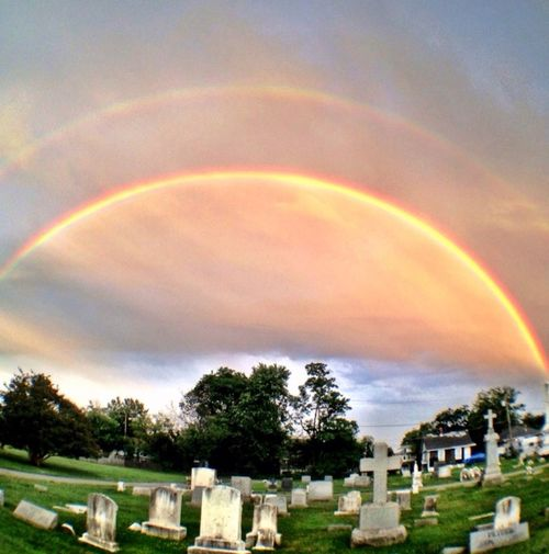Rainbow Nature_collection Cemetery_shots Cemeteryscape Cemeterybeauty OpenEdit Fisheye IPhoneography Olloclip Fisheye Olloclip