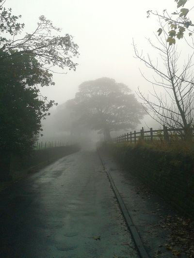 Misty Morning Eyem Misty Day Foggymorning Foggy Early Morning Roadsidephotography On The Road Enjoying The Sights Walking October Dawn Of A New Day Village Life Drystonewall Bridlepaths Valley Pathways Hello World Autumn Colors Peaceful Place Walking Around Taking Pictures Autumnbeauty Fallbeauty NaturalBeauty  Autumn Leaves Walking Around