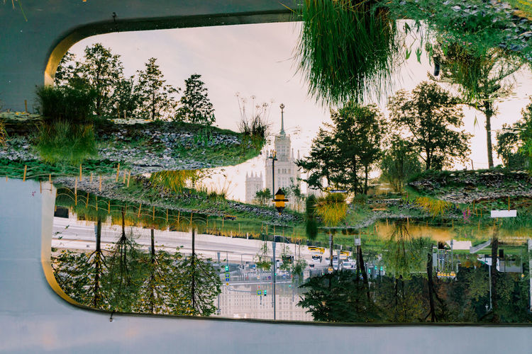 Tree Plant Reflection Nature Glass - Material Day Window Water Architecture No People Transparent Built Structure Car Outdoors Motor Vehicle Transportation Growth Building Exterior Mode Of Transportation Swimming Pool