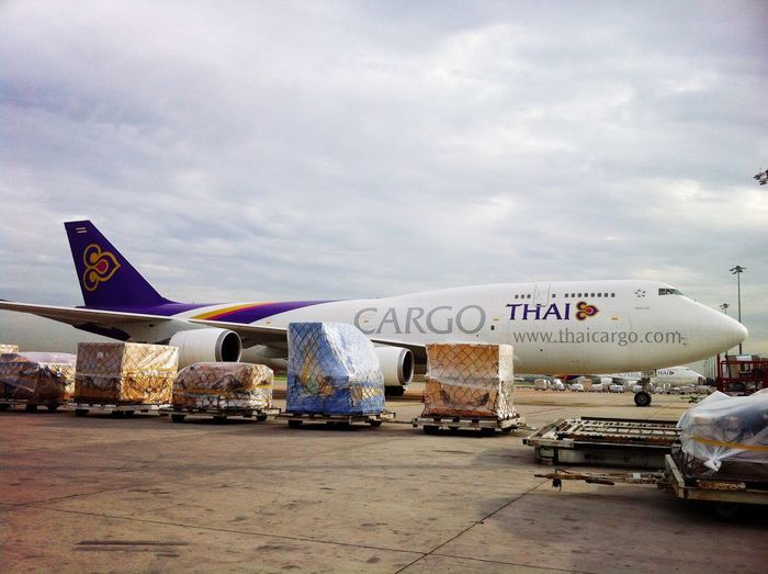 TG cargo aircraft in Bangkok airport. Communication Aircraft Airline Thai Freighter Cargo Goods Import Export Tax Captain Pilot Traffic Airport Plane Bay Remote Sky Aerodynamic Transportation Commercial Airplane Engineering Landing Take Off Jumbo Jet