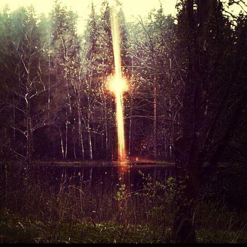 Sweden Forest Landscape Taking Pictures