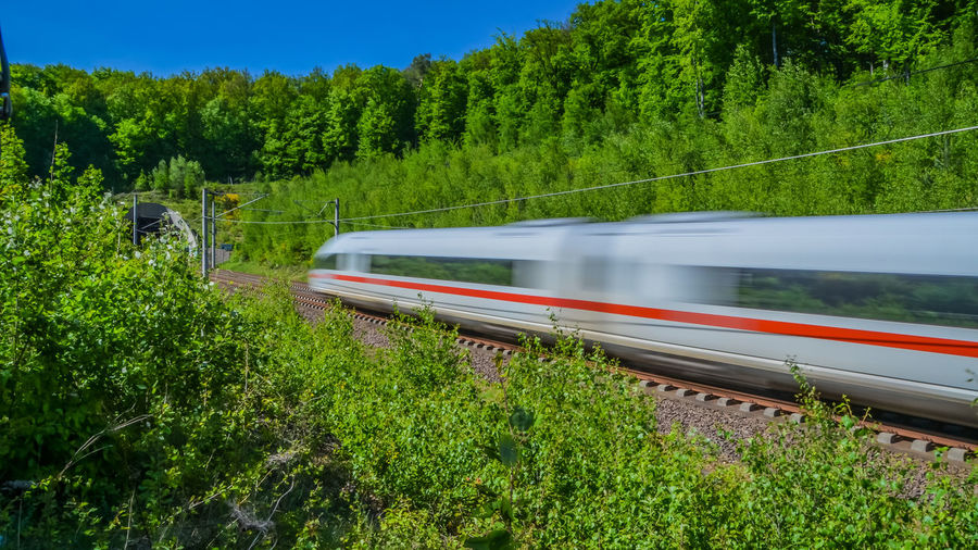 Blurred motion of train by trees