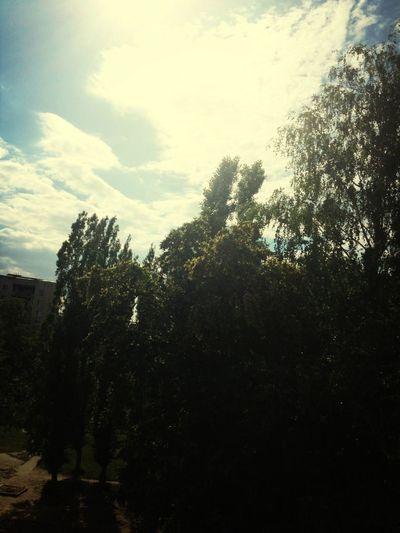 Сегодня отличная погода. Great Weather Today