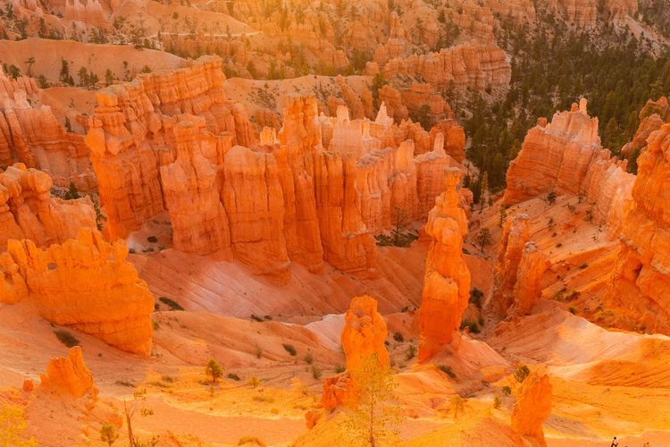 sunrise at Bryce Canyon Beauty In Nature Scenics - Nature Non-urban Scene Rock Tranquil Scene Rock Formation Nature Tranquility Rock - Object Travel Destinations Physical Geography Travel No People Geology Outdoors Eroded Bryce Canyon Sunrise Solid Canyon Landscape Day Sandstone Layered Arid Climate