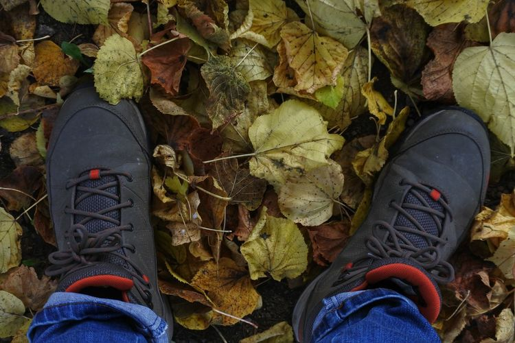 Hiking Boots AndIloveyouforever Wannahaveawalkwithme? Low Section Human Leg Shoe High Angle View Personal Perspective Close-up Leaves Fall Hiker