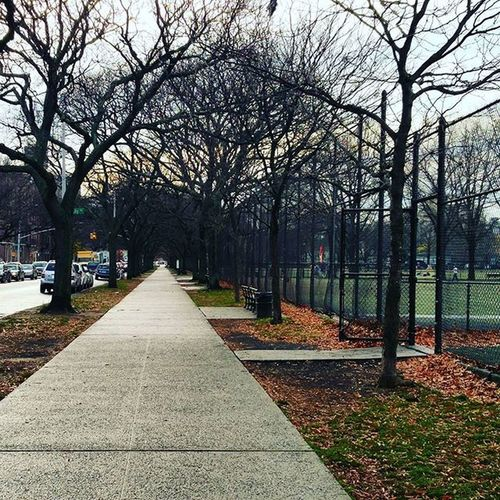 Brooklyn Winter NYC