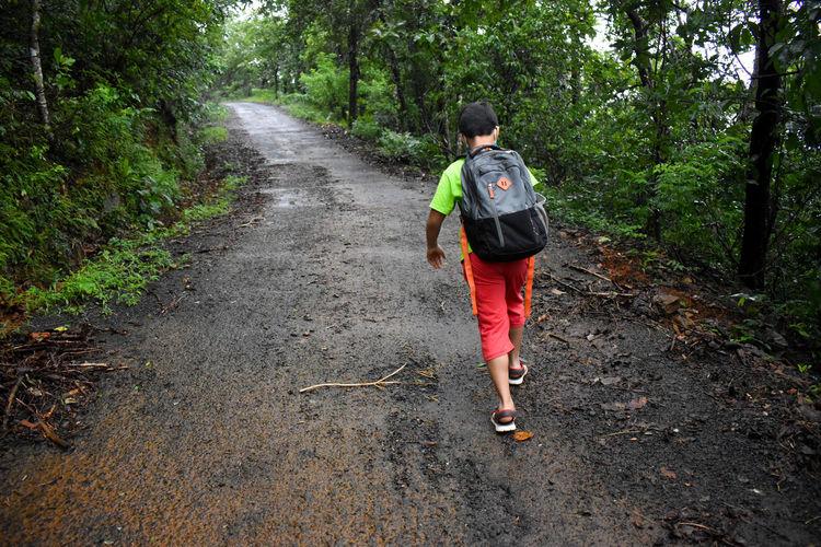 Rear view of boy walking on footpath in forest
