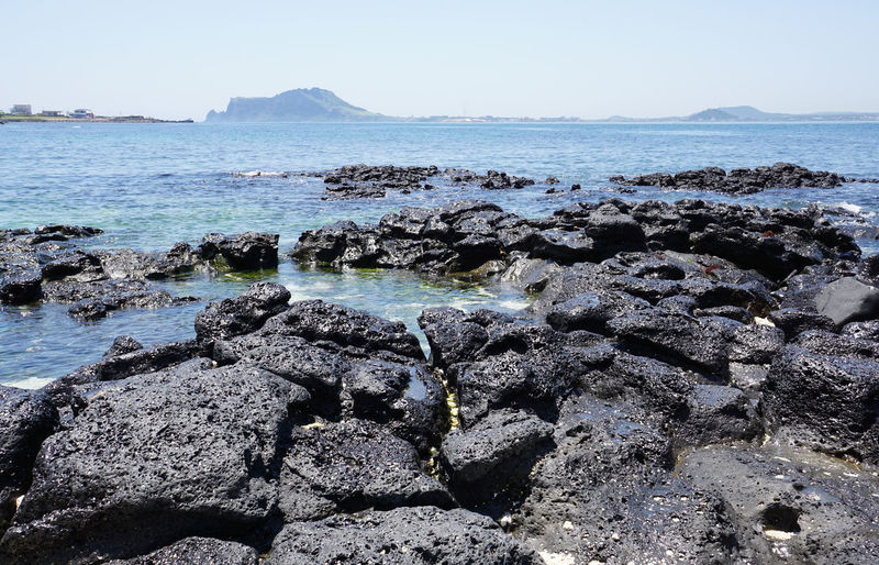 JEJU ISLAND  Seobinbaeksa Beach South Korea Basalt Rock Beach Beauty In Nature Clear Sky Horizon Over Water Nature No People Outdoors Rock - Object Scenics Sea Sky Udo Island Water Lost In The Landscape Perspectives On Nature