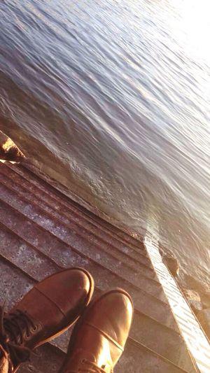 Shoues Gentleman  Leecooper Hanging Out Relaxing Sunset Watter Dunaj