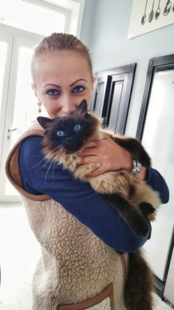 Looking At Camera Home Interior Portrait Cat Birman Cat Blue Eyes Cat Photography Human Eyes Cat Eyes Connection Similar Man And Animal PhonePhotography Woman With Cat Beautiful Girl Beautiful Woman Intense Eyes Intense Look Profound Cats Catlovers Neon Life Pet Portraits Be. Ready.