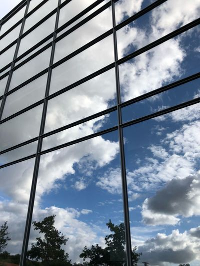 Cloud - Sky Low Angle View Sky No People Tree Day Nature Outdoors Pattern Plant Built Structure Architecture Glass - Material Metal Blue Grid Window Cable Silhouette Power Supply