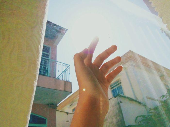 Sunshine 😎😎