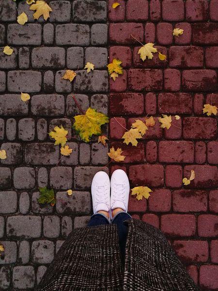 Autumn Leaves City Whiteshoes Looksgood Adidas