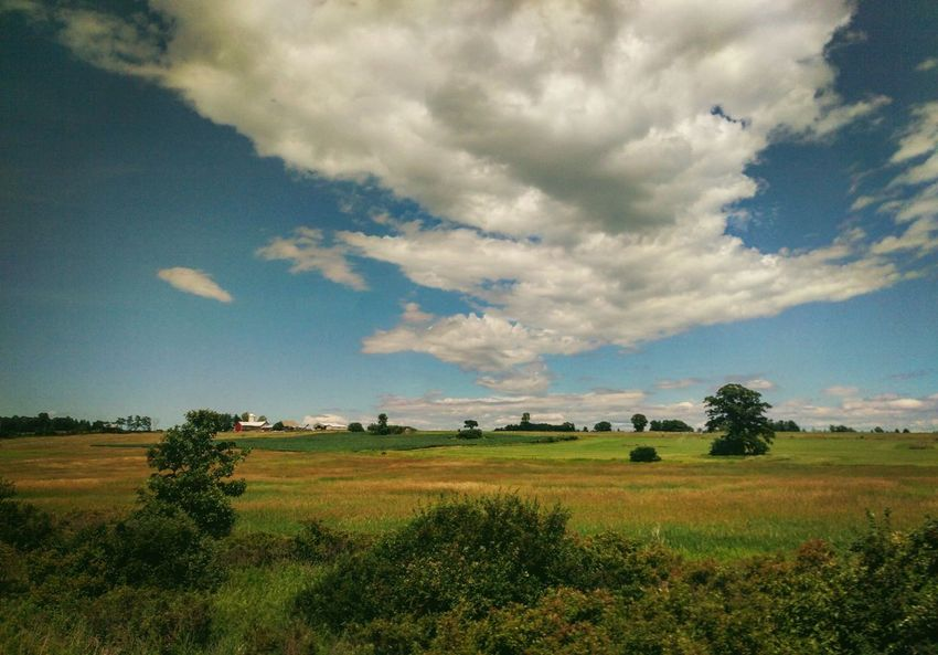 Upstate New York farmland from the passing train. Agriculture Beauty In Nature Cloud Cloud - Sky Cloudy Day Field Grass Grassy Green Color Horizon Over Land Idyllic Landscape Nature New York State No People Non-urban Scene Outdoors Rural Rural Scene Scenics Sky Tranquil Scene Tranquility Upstate New York