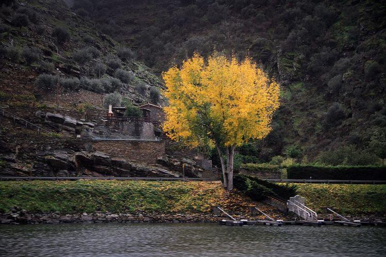 Autumn Relaxing Enjoying Life Otoño 🍁 Autumn Colors